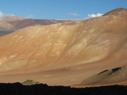 Proyecto Pico del Gallo. Maricunga